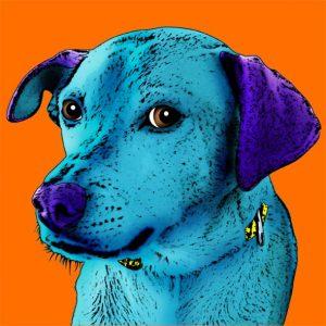 Tableau popart personnalisé avec une photo d'animal.